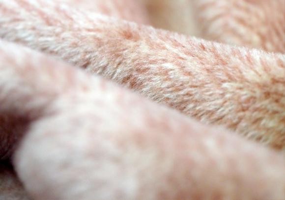 シルクリビングケット(瀧芳株式会社)- 世界が認める起毛技術でふんわり